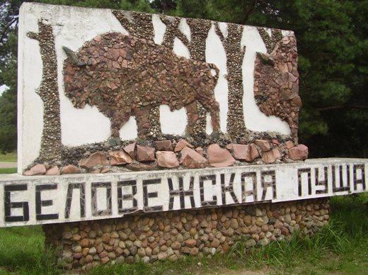 Посещение Беловежской пущи