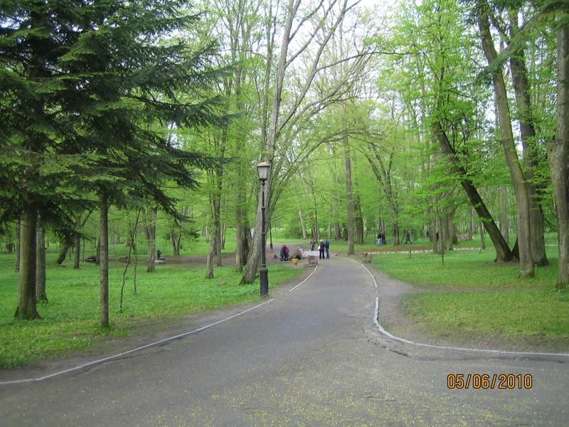 Фото парка около Несвижского замка