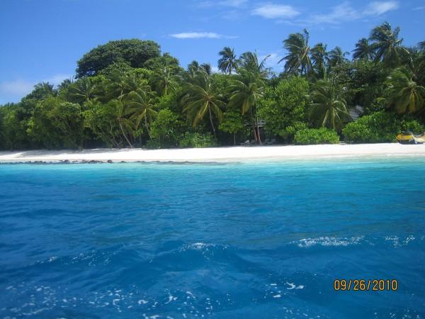 Наш остров Royal Island Resort & Spa (Ройал Айленд)