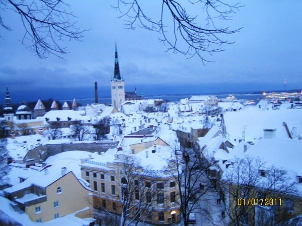 Вид со смотровой площадке в Таллинне