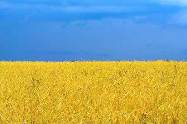 Фото http://javot.net/ukraine/uaflag.htm